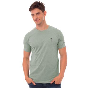 camiseta-aleatory-masculina-basica-new-mescla-verde-claro-modelo-3-