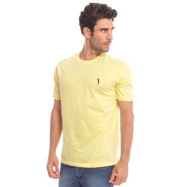 camiseta-aleatory-masculina-basica-lisa-2018-modelo-21-
