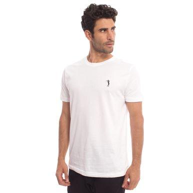 camiseta-aleatory-masculina-basica-lisa-2018-modelo-9-