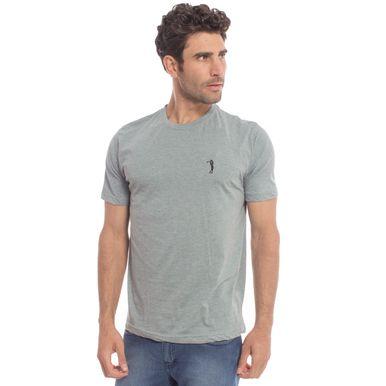 camisata-aleatory-masculina-lisa-mescla-2018-still-29-