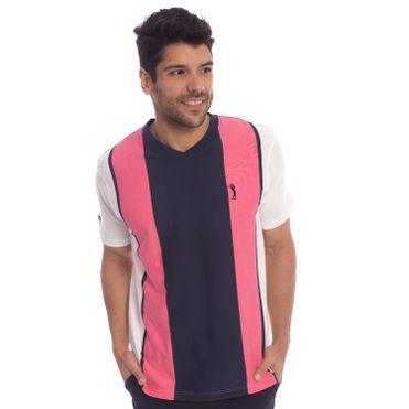 camiseta-aleatory-masculina-listrada-gola-v-wild-modelo-1-