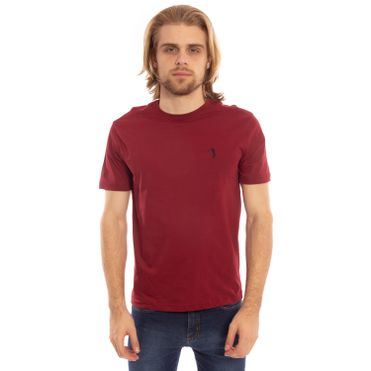 camiseta-masculino-aleatory-lisa-vinho-2019-modelo-1-