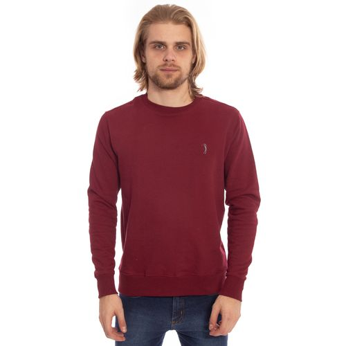 moletom-aleatory-masculino-basico-2019-modelo-1-