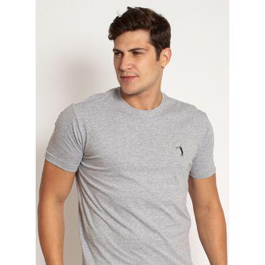 camiseta-aleatory-masculina-lisa-cinza-mescla-modelo-2019-1-