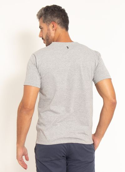 camiseta-aleatory-masculina-estampada-horizon-cinza-modelo-2021-2-