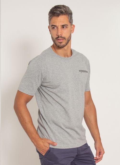 camiseta-aleatory-masculina-estampada-fine-modelo-cinza-2-